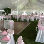 party rental ideas (5)